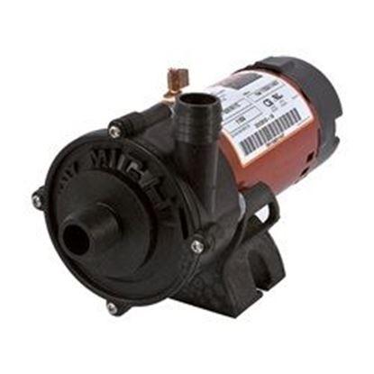 Picture of Pump: 1/16hp 115v 1' Hosebarb Tiny Might- 3312610-19