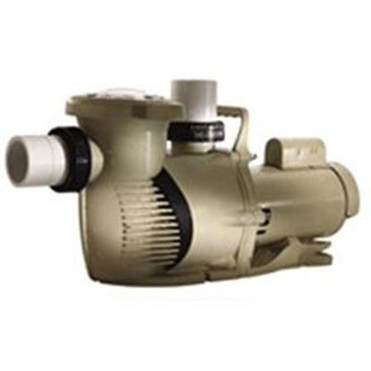 Picture of Intellipro Xf Variable Speed Pump Pf023055