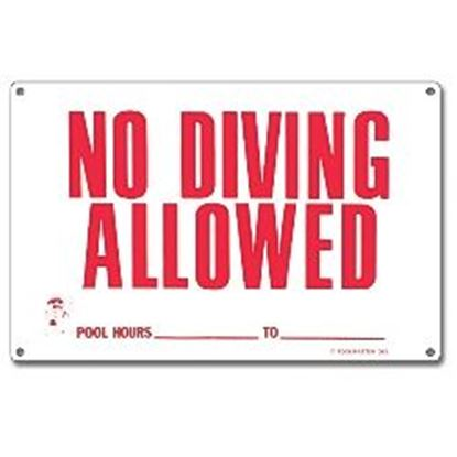 Picture of NO DIVING ALLOWED POOL HOURS PM40342