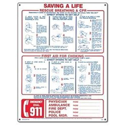 Picture of SAVING A LIFE - EMERGENCY/CPR PM40366